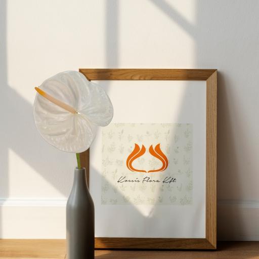 Anthurium - Flamingóvirág - Moments - Fehér